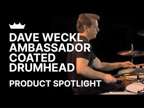 Remo + Dave Weckl: Ambassador Coated Product Demo