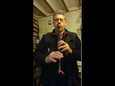 Susato Kildare Low D Whistle (my ref #214) Jigs Demo