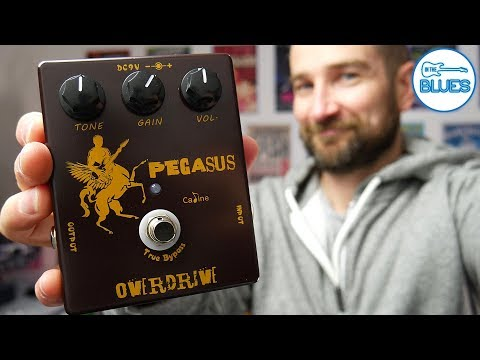 The Caline Pegasus Overdrive CP-43 Pedal - An Affordable Klon Style Pedal