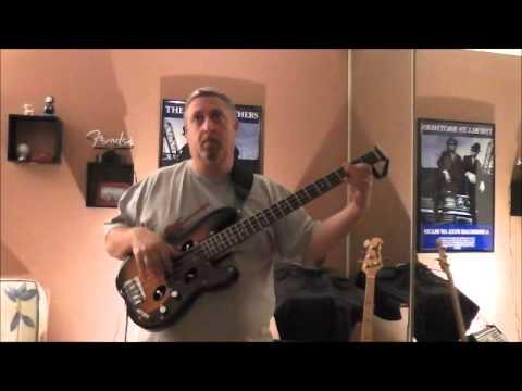 Traveler Guitar TB-4P Bass