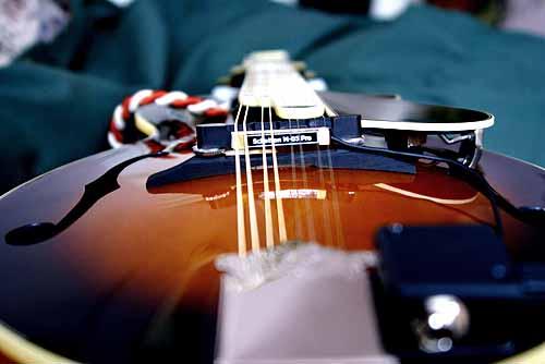 best mandolin pickup, mandolin pickup reviews