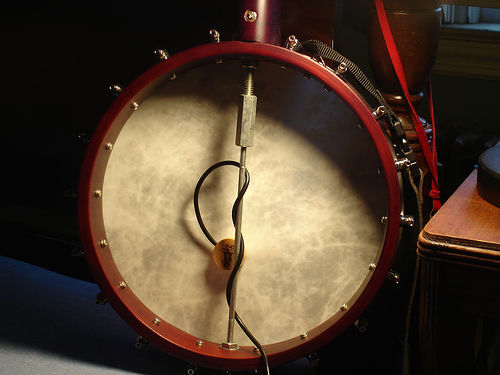 best banjo pickup, banjo pickup reviews
