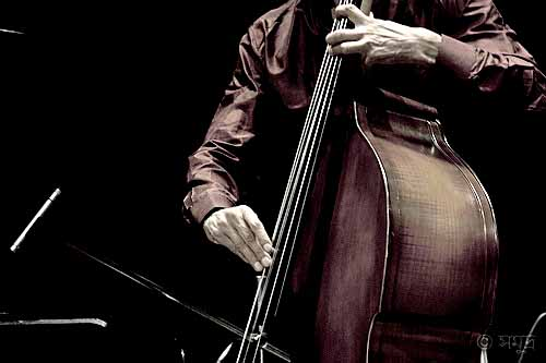 cheap upright bass, cheap double bass, upright bass for sale cheap, cheap double bass for sale, cheap string bass